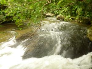 絶賛増水中