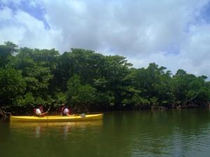 ピナイサーラ&バラス島