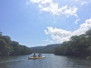USA発ピナイサーラの滝行き特急カヌー