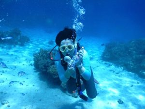 100本潜って、30回跳んで、西表島。