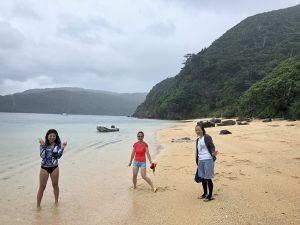 西表島、台風の影響で