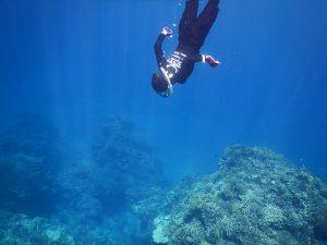 潜水 せんすーい