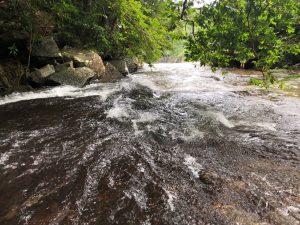 滝も増水中!