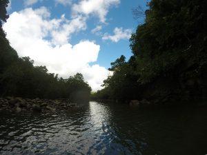 山へ、川へ、海へ!