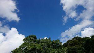 太陽と青空、そして27℃